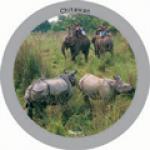93-chitwan