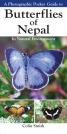 butterflies of Nepal