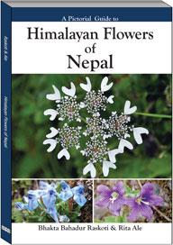 978-99933-47-99-6 flower